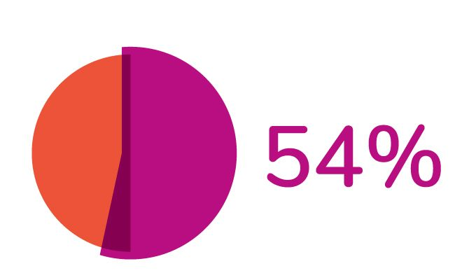 Pie Graph showing 54%
