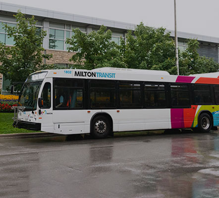 Town of Milton bus with Milton Transit logo and colours on the side, parked in front of a building with trees in front
